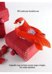 2 oiseaux inséparables rouge