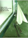 25m Ruban 25mm satin vert anglais