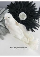 2 oiseaux inséparables majestueux blanc