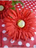 4 Gerberas rouge
