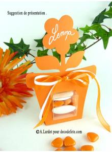 6 boîtes fleur ORANGE