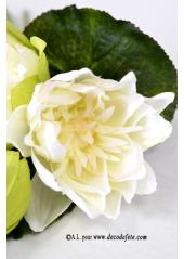 1 Bouquet de Lotus ECRU