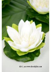1 Nénuphar en fleur BLANC