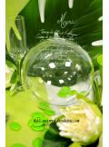 1 Boule transparente 18cm